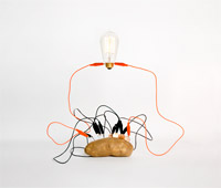 http://www.sorryzorrito.com/2010/12/simple-science/